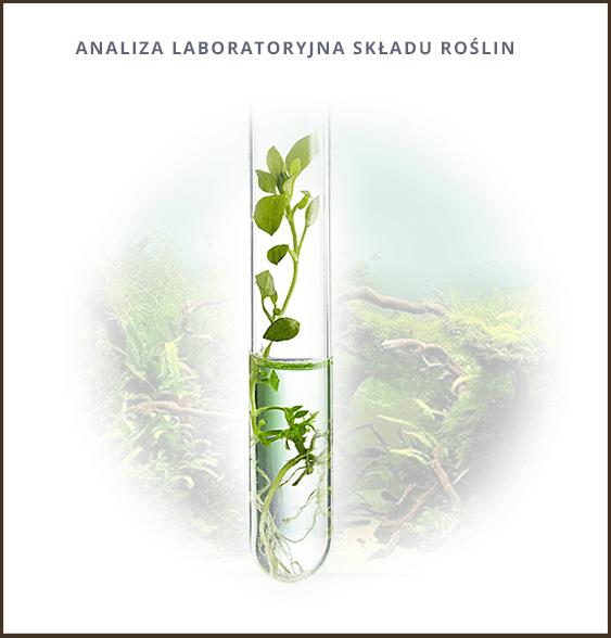 Analiza laboratoryjna składu roślin