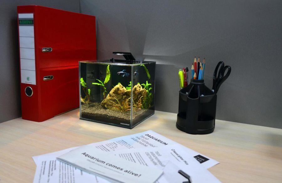 Aqualighter Pico Czarna Lampka Do Nano Akwarium Słodkowodnego Do 10l
