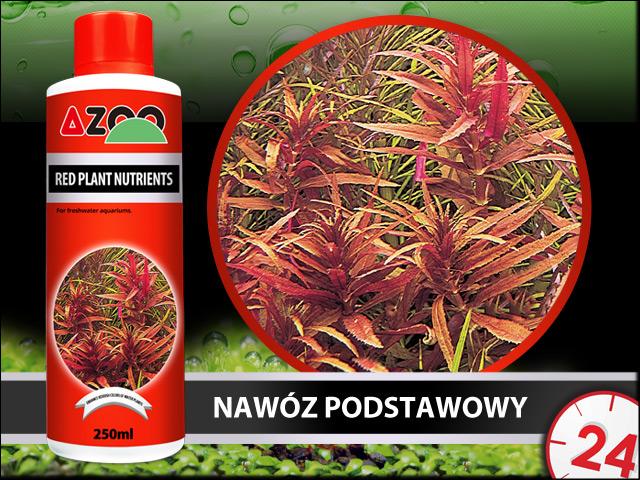 AZOO RED PLANT NUTRIENTS 500ml - Kompletny nawóz do akwarium, poprawia kolory roślin czerwonych.