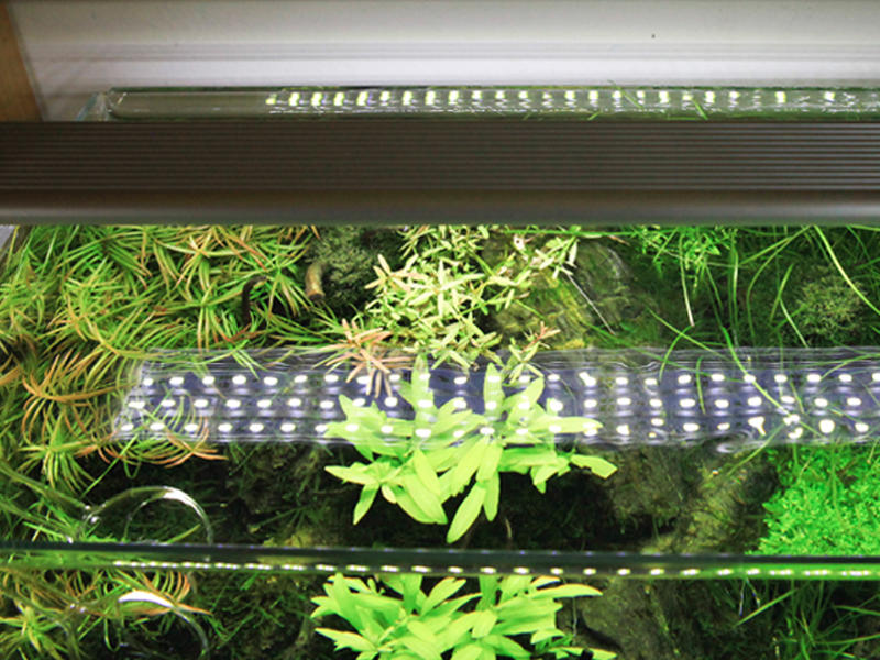 CHIHIROS (Uszkodzone) A401 LED (nr. 3) (330-1401) - Oświetlenie dla akwarium słodkowodnego i roślinnego