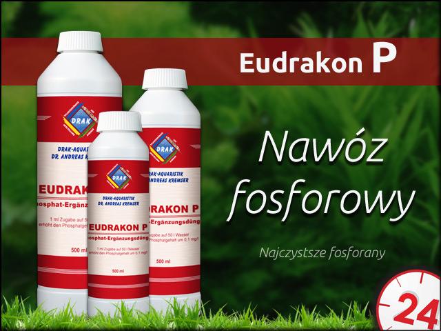 DRAK EuDrakon P 250ml | Wysokiej jakości nawóz fosforowy