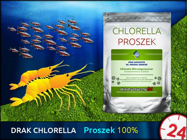 DRAK Chlorella Powder, Torebka 200g