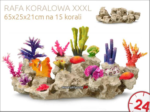 AQUA DELLA Rafa koralowa XXXL [234-426159] | Moduł bazowy dla korali