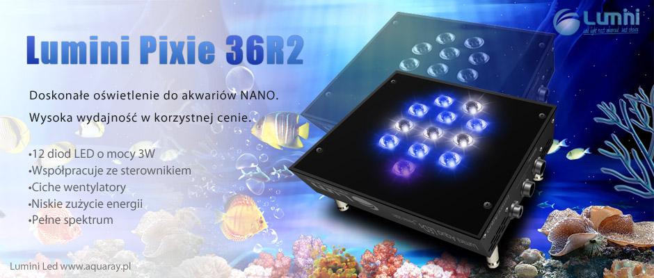 Lumini Pixie 36r2 Profesionalne Oświetlenie Do Nano Akwarium Morskiego