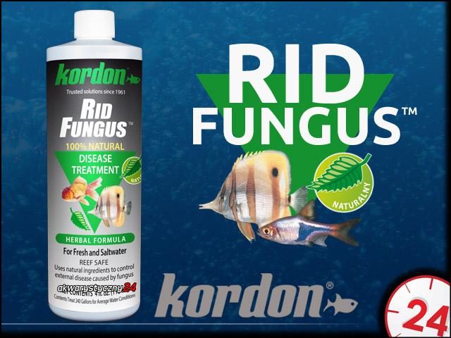 KORDON RID FUNGUS 118ml