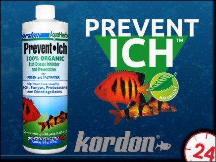 KORDON PREVENT ICH 118ml