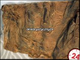 AQUATERRA T�O CANYON ROCK [RED] 80x40 cm
