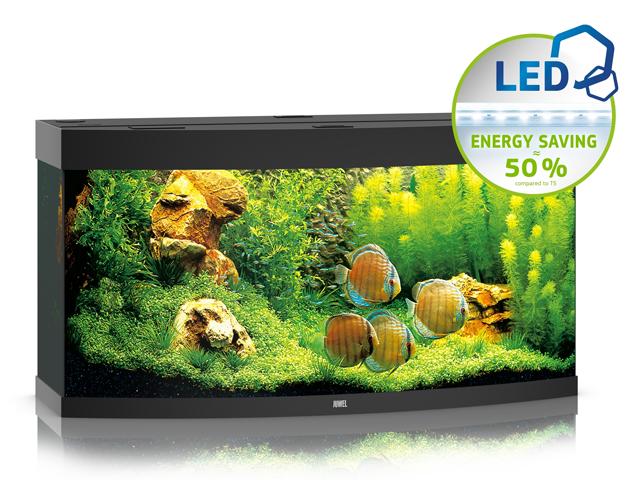 JUWEL VISION 260 LED [4 kolory] | Akwarium z pełnym wyposażeniem bez szafki