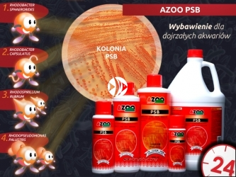 AZOO PSB | Wielozadaniowy preparat zawierający miliardy pożytecznych bakterii fotosyntetycznych