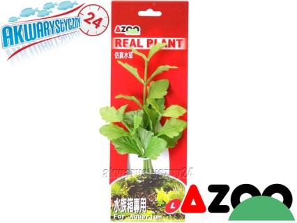 AZOO SHINNERSIA RIVULARIS L (20cm) (AZ98020) - Roślina sztuczna z tkanymi liśćmi