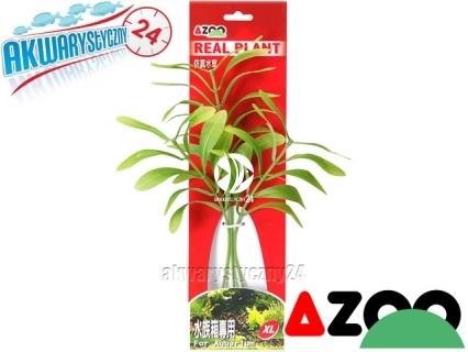 AZOO HYGROPHILA POLYSPERMA XL (30cm) (AZ98025) - Roślina sztuczna z tkanymi liśćmi