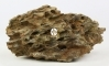 AQUAWILD Dragon Stone 1kg - Piękne dziurawe skały do akwarium roślinnego i dekoracyjnego