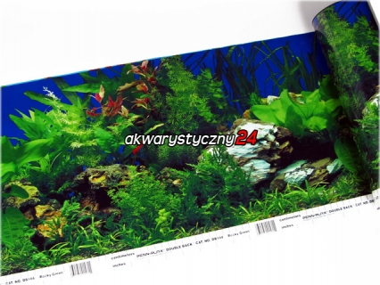 PENN PLAX Foto tapeta do akwarium (wysokość 30cm) nr.104 - Tło dwustronne