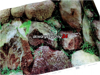 PENN PLAX Foto tapeta do akwarium (wysokość 61cm) nr.243 - Tło dwustronne