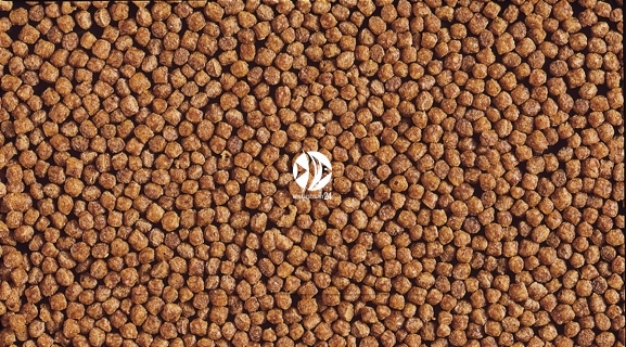 HIKARI Cichlid Gold (04111) - Pływający pokarm dla pielęgnic i innych ryb tropikalnych