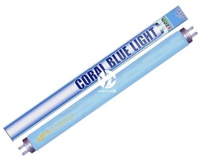 AZOO Coral Blue Light T8 (AZ20007) - Niebieska, aktyniczna świetlówka podstawowa do akwarium morskiego.