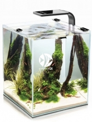 AQUAEL Shrimp Set Smart Czarny 10L (113224) - Krewetkarium z oświetleniem LED, filtrem i grzałką
