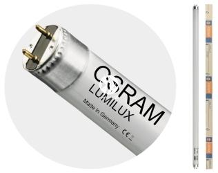 OSRAM Lumilux T8 (L58/11-865) - Świetlówka dzienna 6500K o wysokim strumieniu świetlnym