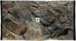 ATG Tło Standard (STD50x30) - Tło uniwersalne do akwarium, zawiera motywy skał i korzeni 50x30 cm