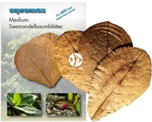 AQUAMAX Medium-Seemandelbaumblätter (007) - Liście migdałecznika morskiego 10 sztuk
