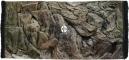 ATG Tło Standard (STD50x30) - Tło uniwersalne do akwarium, zawiera motywy skał i korzeni 60x30 cm