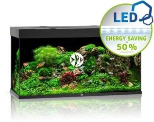JUWEL RIO 350 LED [4 kolory] | Akwarium z pełnym wyposażeniem bez szafki
