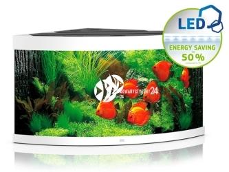 JUWEL TRIGON 350 LED [4 kolory] | Akwarium z pełnym wyposażeniem bez szafki