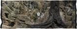 ATG Tło Standard (STD50x30) - Tło uniwersalne do akwarium, zawiera motywy skał i korzeni