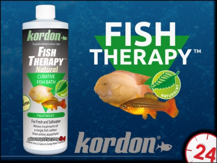 KORDON FISH THERAPY (32656)