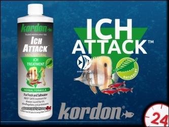 KORDON ICH ATTACK (39444)