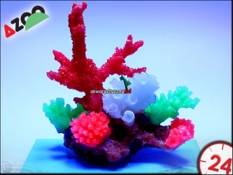 AZOO GLOWLIGHT CORAL (M) RED (AZ27106)