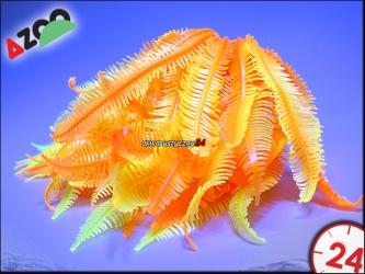 AZOO NEON CORAL (AZ27145) - CAULERPA SP.