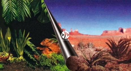 EBI Tło dwustronne Jungle + Desert (241-109076) - Fototapeta do przyklejenia na tylną szybę akwarium lub terrarium