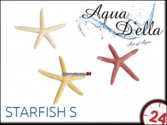 AQUA DELLA STARFISH S [234-418918] | Ręcznie malowana rozgwiazda do akwarium