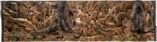 ATG Tło Standard (STD50x30) - Tło uniwersalne do akwarium, zawiera motywy skał i korzeni 200x60 cm