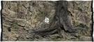 ATG Tło Standard (STD50x30) - Tło uniwersalne do akwarium, zawiera motywy skał i korzeni 120x60 cm