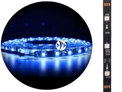 AQUAWILD Moon-Led Niebieski (AQMLEDN1) - Oświetlenie nocne do akwarium + zasilacz
