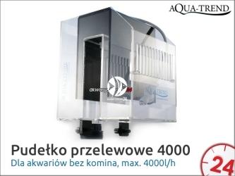AQUA TREND OVERFLOW BOX 4000 (ATRS0026) - Pudełko przelewowe max. 4000l/h