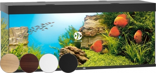 JUWEL Rio 450 LED (05350) - Akwarium z pełnym wyposażeniem bez szafki, 4 kolory do wyboru