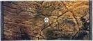 EKOL Tło Płaskie (PL50x30) - Tło strukturalne do akwarium z motywem skalnym 80x40 cm