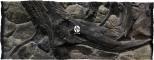 ATG Tło Amazonka (AM50x30) - Tło do akwarium z motywami korzeni i skał, imitujące biotop Amazonii. 120x50 cm