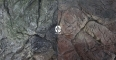 EKOL Tło Płaskie (PL50x30) - Tło strukturalne do akwarium z motywem skalnym