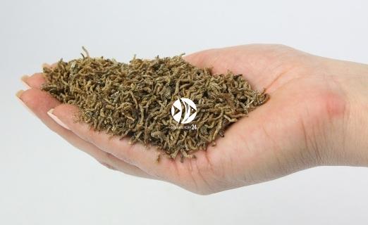 Ochotka liofilizowana - Naturalny pokarm dla ryb, żółwi, gadów i ptaków.