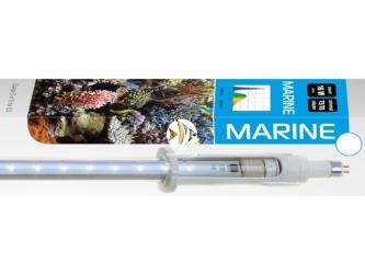 AQUAEL LEDDY TUBE RETROFIT MARINE 16W 820-950mm (114578) | Świetlówka Led do pokryw akwariowych 85-90cm, akwaria morskie
