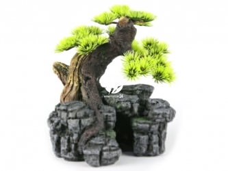 AQUA DELLA Bonsai SM (234-105337) - Ręcznie malowany drzewo bonsai IGŁY do akwarium [wymiary - 16,5x16,5x18cm]