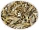 Stynka suszona - Naturalny pokarm dla dużych ryb mięsożernych, drapieżnych, piranii i żółwi. 100g