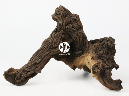 Korzenie Mopani 1kg - Piękne korzenie afrykańskiego drzewa Mopani
