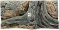 Back To Nature Amazonas (03000007) - Tło strukturalne z motywami drewna i skał do akwarium 100x50cm