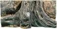 Back To Nature Amazonas (03000007) - Tło strukturalne z motywami drewna i skał do akwarium 80x40cm
