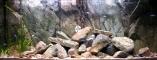 Back To Nature Rocky Juwel (03000023) - Tło strukturalne z motywami skalnymi do akwarium Juwel.